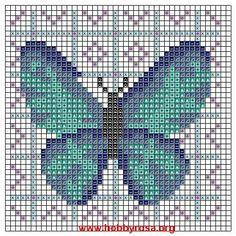 Farfalla Blu - Clicca l'immagine per chiudere