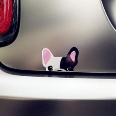 French Bulldog Statues, Pillows, Beddings, Home Items - Frenchie World – Frenchie World Shop Custom Car Decals, Custom Cars, Funny Stickers, Car Stickers, Cute French Bulldog, French Bulldogs, Smart Fortwo, Cute Chihuahua, Smart Car