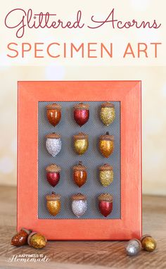 DIY Glitter Acorn Fall Home Decor. Use acorns, Elmer's Glitter Glue, CraftBond Quick Dry Glue, glitter, and a picture frame to make sparkly decorations for autumn.