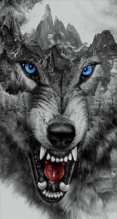 Traditional wolf tattoo design is part of American Traditional Wolf Tattoo Ideas - wolf growling Snarling Wolf Large Closeup Bares Fangs Image From Tinypic Com Tags Anime Wolf, Wolf Tattoo Design, Wolf Design, Design Design, Wolf Photos, Wolf Pictures, Wolf Tattoos Men, Dog Tattoos, Aquarell Wolf Tattoo