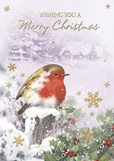 Pack of 12 Traditional Scenic Charity Christmas Cards with Gold Foil - Robin's