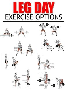 Want to know the most effective ways to train your legs and glutes? Here's everything you need to build shapely legs and a firm butt! This workout is designed to maximise fat loss while toning and defining leg and glute muscles. Leg Workouts For Men, Fitness Workouts, Best Leg Workout, Gym Workout Chart, Workout Routine For Men, Weight Training Workouts, Chest Workouts, Gym Fitness, Workout Ideas