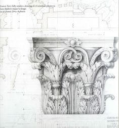 Magnificent drawing of a Corinthian pilaster by Quinlan & Francis Terry architects.