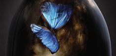 Pure by Julianna Baggott - review