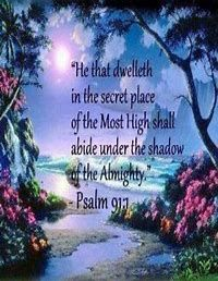 Image result for psalm kjv 91:4 kjv bird Word Of Faith, Word Of God, Scripture Quotes, Bible Scriptures, Psalms Quotes, Bible 2, Scripture Pictures, Shadow Of The Almighty, Under The Shadow