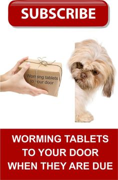 If you want to have your pet worming tablets posted to us log on here Veterinary Services, Clinic, Your Pet, Pets