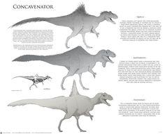 Some development work for a Dinosaur model Dinosaur Mug, Prehistoric Creatures, Prehistoric Wildlife, Curious Creatures, Jurassic Park World, Types Of Animals, Extinct Animals, Funny Animal Pictures, Creature Design