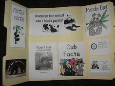 Homeschoolshare Giant Panda lapbook to go with China