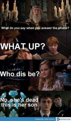 Harry Potter No Parents Meme: