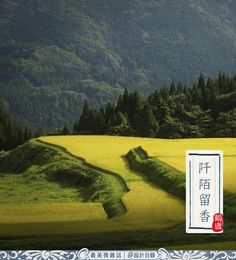24 Solar Terms of China——Autumn begins