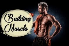 How to Build Muscle - https://www.all4health.co/how-to-build-muscle/