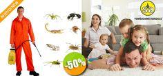 Fumigaciones González - $325 en lugar de $650 por 1 Servicio de Control de Insectos Rastreros en Casa o Condominio + 20% de Descuento en Tratamiento de Insectos Come Madera. Click: CupoCity.com