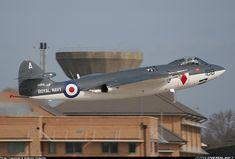 Hawker Sea Hawk FGA6 - UK - Navy   Aviation Photo #0805904   Airliners.net
