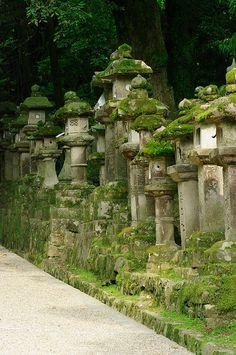 Moss Pillars