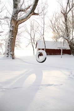Barn & Tire Swing In Winter; love the snow not fond of the cold Winter Szenen, I Love Winter, Winter Magic, Winter White, Winter Christmas, Merry Christmas, I Love Snow, Winter's Tale, Snowy Day