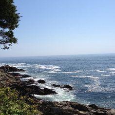 Ogunquit ME - Maine's beautiful rocky coast