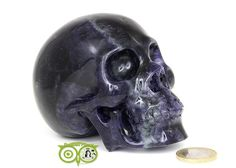 Fluoriet kristallen schedel KS-RMIN-95-912   Webshop Danielle Forrer   Mineralen   Klankschalen   Koshi shanti's   Tingsha   Inzichtkaarten   Pendels   etc   Wieringerwerf