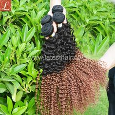 #1b/30,black brown ombre hair weaves,curly wave two tone human hair,shop from www.latesthair.com/ Curly Weave Hairstyles, Latest Hairstyles, Curly Hair Styles, Blonde Ombre, Blonde Hair, Black To Brown Ombre Hair, Ombre Hair Weave, Ombre Human Hair Extensions, Hair Shop