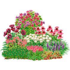 Assortment Mysterious Perennials buy online from Gärtner Pötschke Amazing Gardens, Beautiful Gardens, Fleurs Diy, Hydrangea Care, Planting Plan, Plantation, Diy Garden Decor, Raised Garden Beds, Shade Garden