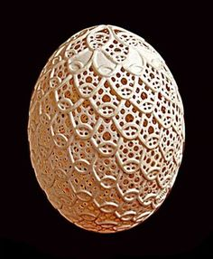 Egg Carving Art