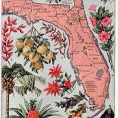 Vintage Florida Linens