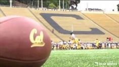Stay on top of your favorite Cal Football team with news, info and stats. For more on Cal Bears.