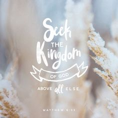 Seek the Kingdom of God above all else, and live righteously, and he will give you everything you need. Matthew 6:33