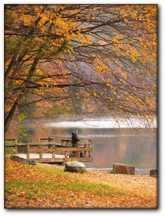 Quaker Lake, Allegany State Park, NY | Mark K on flickr