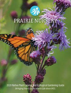 8 Best Prairie Nursery Catalog Images