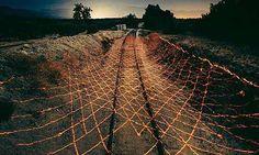 Govt. fast-tracks deployment of Laser Walls at Indo-Pak border to check infiltration