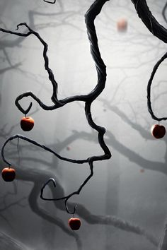 Apple Tree, The Enchanted Wood.  There was a time in my life when i used to see this EVERYWHERE!