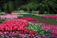 Longwood Gardens & Home Kennett Square PA