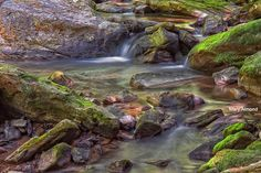 Cool Mountain Stream in Ansted, WV by The Merry Cat