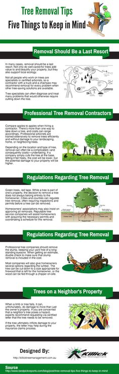 The following infographic is designed by Killick Tree Management. What to do? Whether it's because of renovation, a new building, or maybe the presence of a hazard, the tree that you have in your space needs to be removed. You may be wondering as to how you're going to do it. This infographic explains some ways to safely remove a tree.