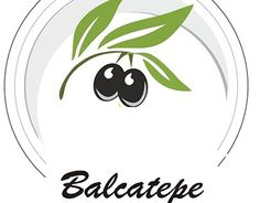 "Check out new work on my @Behance portfolio: ""   www.balcatepe.com.tr"" http://on.be.net/1IA0Syy"
