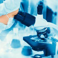 Breakthrough Study: Fungus May Trigger Crohn's Disease