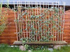 Banc de jardin avec des plantes jardin,extérieur,DIY