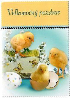 Veľkonočný pozdrav Album, Bird, Birds, Birdwatching, Card Book