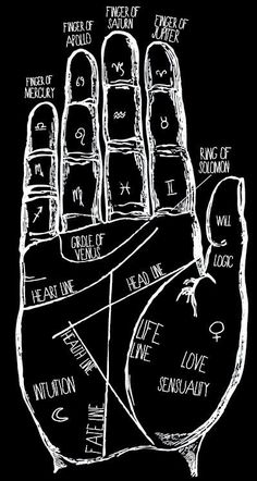 Does Your Palm Reveal About Your Personality? Im a passionate person seeking freedom in my evey day life.Im a passionate person seeking freedom in my evey day life. Witch Aesthetic, Book Of Shadows, Coven, Wiccan, Passionate Person, Numerology Chart, Numerology Numbers, Black White, Black Art