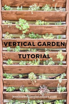 DIY Vertical Garden - Jessica Welling Interiors Learn to build a DIY vertical garden for herbs, succulents, or other plants with this easy step-by-step tutorial! This is the perfect way to dress up a wall, fence, or side of a building. Jardin Vertical Diy, Vertical Garden Design, Vertical Plant Wall, Garden Wall Designs, Herb Garden Design, Back Gardens, Outdoor Gardens, Wall Herb Gardens, Succulent Wall Gardens