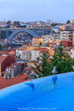 The Yeatman Hotel in #Porto is arguably the best wine hotel the world, a luxury haven for good food, good wines and the best views of Porto.