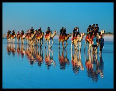 Camels on Cable Beach, Broome - North West Australia -- by wildplaces.deviantart.com....Must do!
