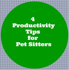4 Pet Sitting Business Building Productivity Tips