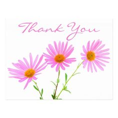 Shop Floral Thank You Pink Lavender Daisy Flower Postcard created by merrybrides. Thank You For Birthday Wishes, Thank You Wishes, Thank You Cards, Happy Birthday, Pink Gerbera, Pink Daisy, Beautiful Flowers Pictures, Flower Pictures, Thank You Wallpaper