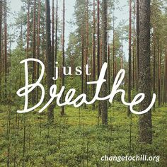 Stop what you are doing and take 10 deep, long breaths.  Changetochill.org  #chiller #changetochill #justbreath #breath #minnesota #minneapolis #stpaul #instagood #picoftheday #photooftheday #nature #instamood #inspiration #motivation #stressless #stressrelief  #nostress