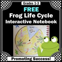 Frog Life Cycle FREE Science Interactive Notebook Activities