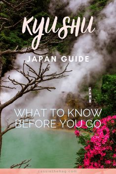 Kyushu Itinerary for one or two weeks in Japan. Includes costs and all the best places to see nature,, history and modern cities on your trip. Japan Travel Tips, Asia Travel, Solo Travel, Travel Guide, Kumamoto Castle, Takachiho, Japan Guide, Tokyo Guide, Beautiful Places In Japan