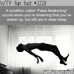 False Awakening - WTF fun facts