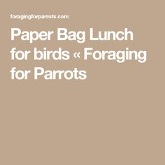 Paper Bag Lunch for birds «  Foraging for Parrots