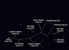 images of different constellations with labels - Yahoo Image Search Results Ursa Minor, Star Chart, Bright Stars, Yahoo Images, Constellations, Astronomy, Image Search, Wattpad, Facts